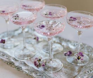 Martini glasses gin cocktail